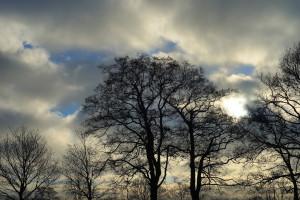 Świeże powietrze sprawia, że czujemy się szczęśliwsi w pandemii