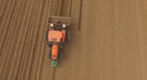 Mille tonnellate di patate andranno nella ... foresta. Jockerfarm sta parlando con il signor Zbyszek