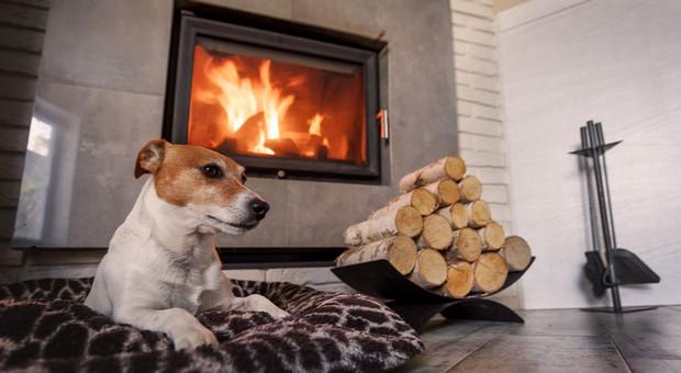 Poznaj 5 zalet wynikających z posiadania kominka w domu