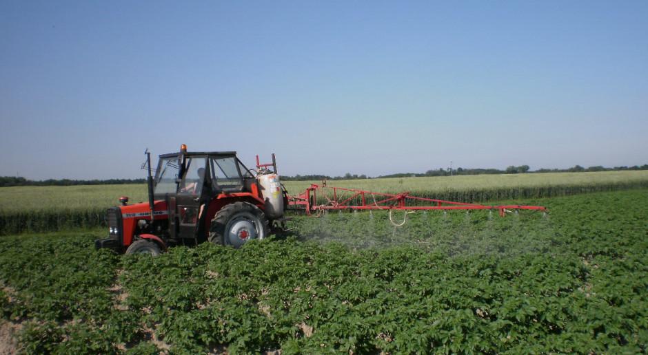 Najplenniejsze średnio późne i późne odmiany ziemniaka jadalnego