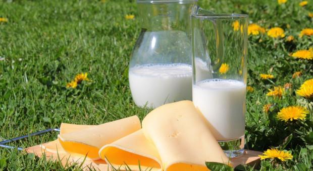 Niemcy: W 2020 roku wzrosła sprzedaż produktów mlecznych