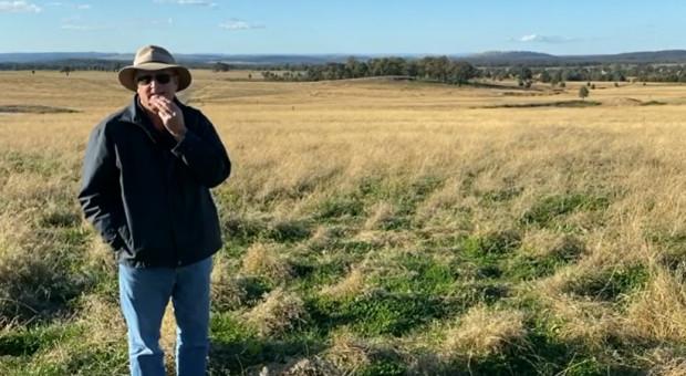 Rolnictwo regeneratywne na świecie: Pasture cropping w Australii