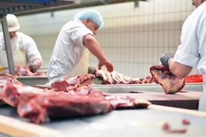 KOWR: 2020 - niełatwy rok dla producentów mięsa