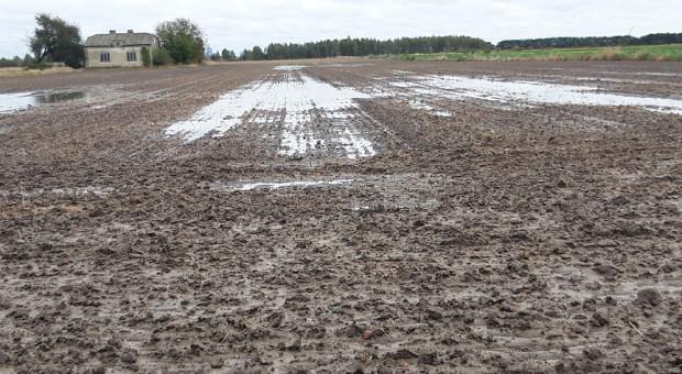 KE uruchomiła Europejskie Obserwatorium Gleb