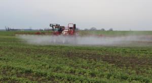 Meksyk wycofuje zmodyfikowaną genetycznie kukurydzę i glifosat