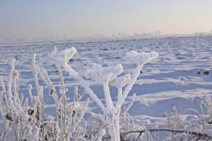 Intensywny śnieg w województwie pomorskim
