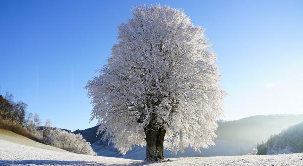 Prognoza pogody na 18  i 19 stycznia