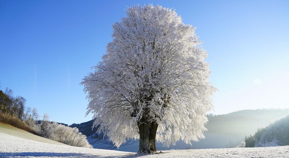 Prognoza pogody na 22 i 23 stycznia