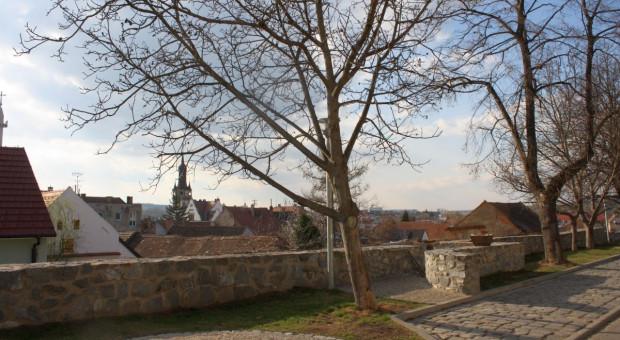 Czechy: Posłowie chcą 55 proc. udziału czeskich produktów spożywczych w sklepach