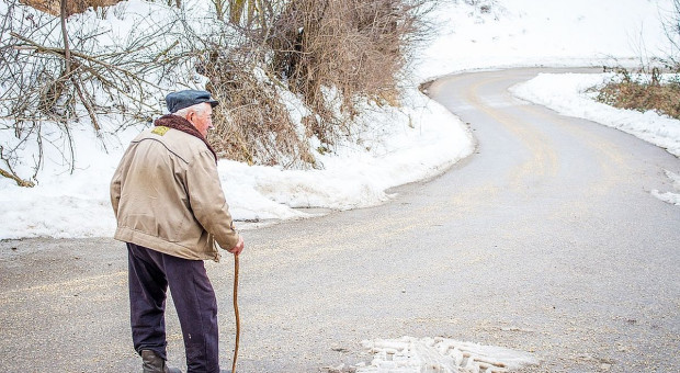 Minister Puda o emeryturach rolniczych