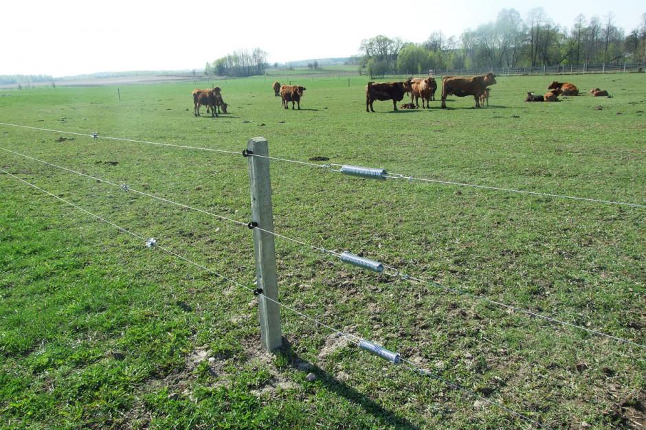 Myśląc o ogrodzeniu pastwiska, nie można zapomnieć obramie, przez którą będą przechodzić zwierzęta. Wprzypadku płotu elektrycznego trzeba dokupić zestaw bramowy składający się zsprężyn, izolatorów oraz uchwytu kołnierzowego, Foto. Pomelac