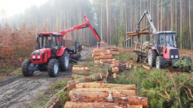 Kto i czym pracuje w lesie?
