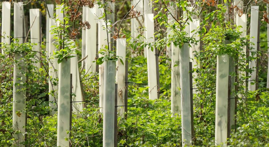 Dania walczy o ochronę klimatu w rolnictwie