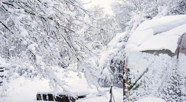 Spadnie mniej śniegu. Opady głównie na północnym wschodzie