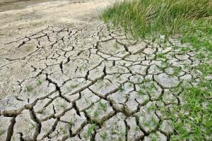 Jakie zmiany klimatyczne czekają Polskę w XXI wieku?
