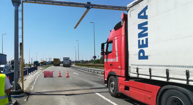 Jak przejścia graniczne chronione są przed transferem ASF?