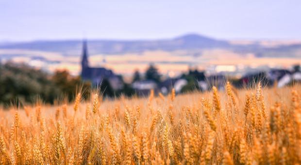 Ile ziemi ma kościół?
