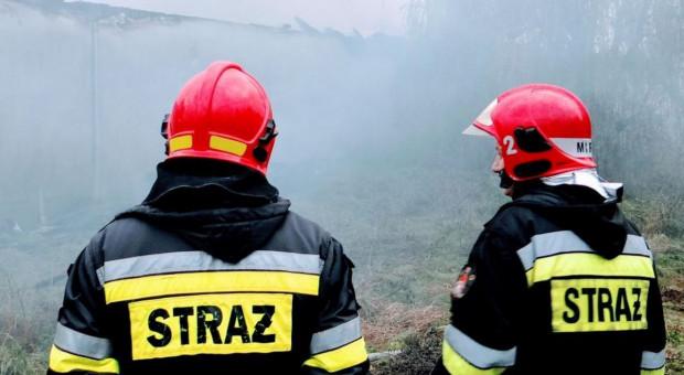 Pożar chlewni w Wielkopolsce