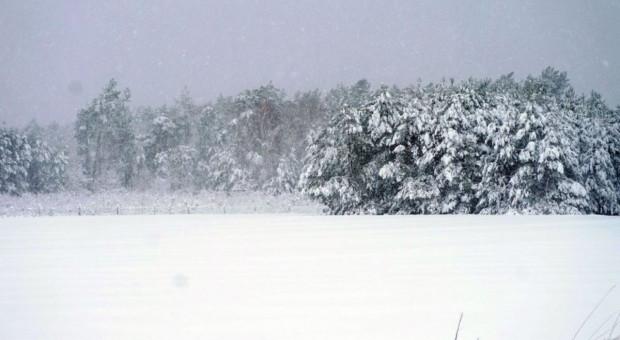 Na Podlasiu do 40 cm pokrywy śnieżnej