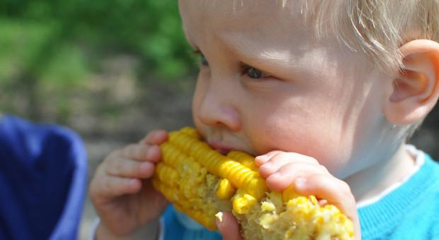 UE to drugi, co do wielkości producent kukurydzy cukrowej
