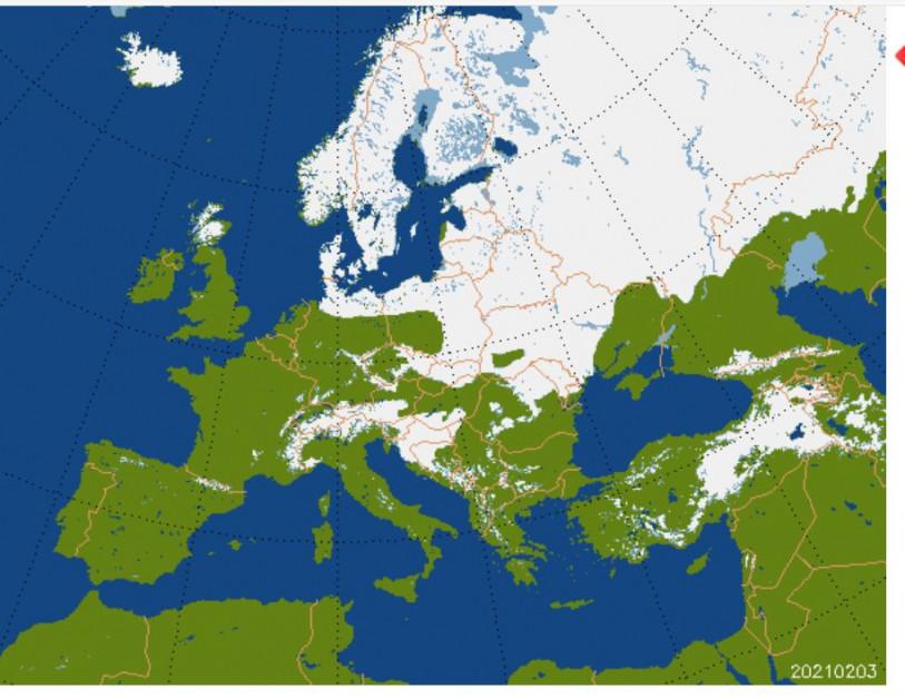Warstwa zalegającego śniegu - 3 luty 2021 r. źródło: zoz.cbk.waw.pl