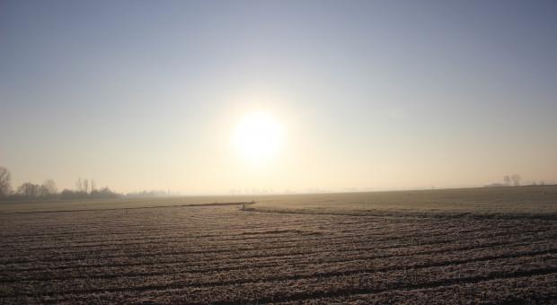 Projekt: możliwość przekazania państwowej ziemi na utworzenie terenów zieleni