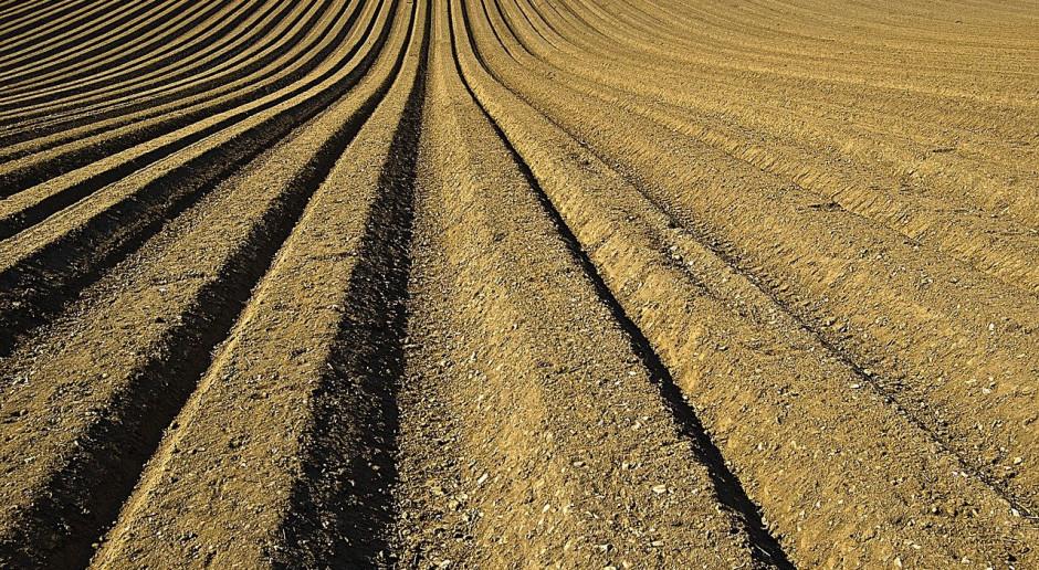 KE: Otwarto ankietę internetową o poprawie stanu gleby