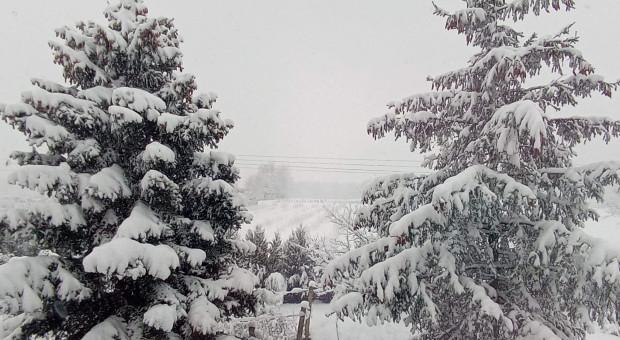 IMGW: śnieg niemal w całym kraju