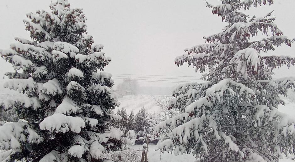 Prognoza pogody na 17 i 18 lutego
