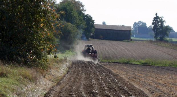 Dolnośląskie: Lewica chce ograniczenia nabywania nieruchomości rolnych przez Kościół katolicki