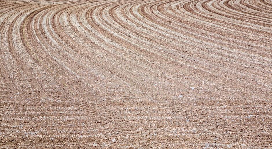 Niemcy: Trwa utrata gruntów rolnych