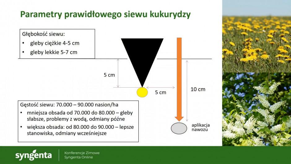 Konferencja zimowa - parametry prawidłowego siewu kukurydzy, Syngenta