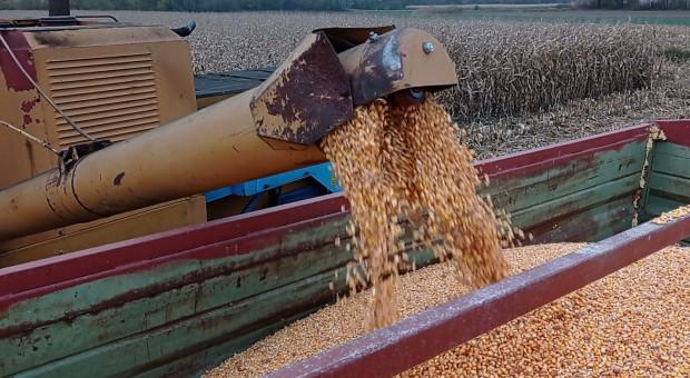 Chiny windują ceny zbóż na Ukrainie