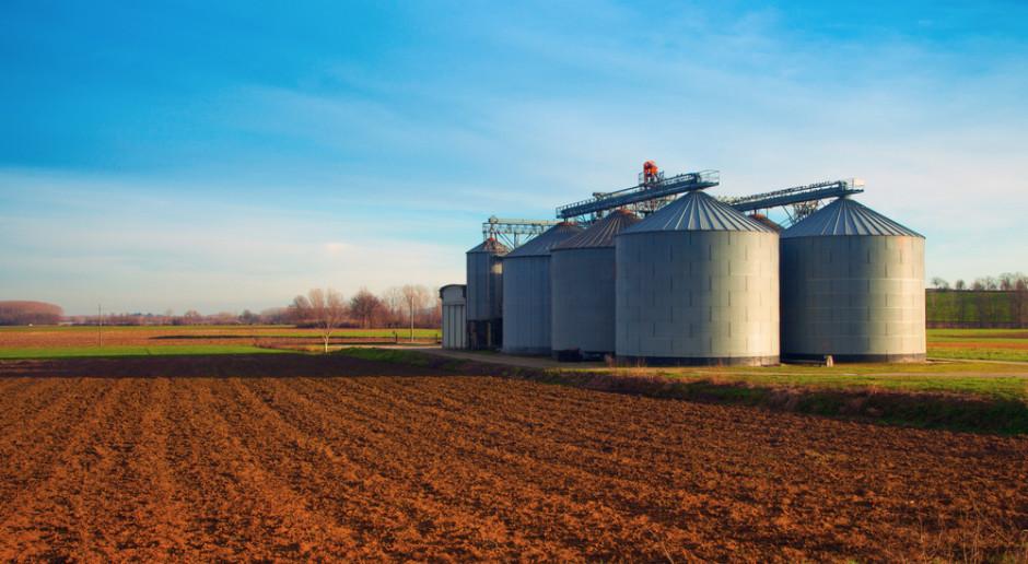 Raport: Duże gospodarstwa - bardziej przyjazne środowisku