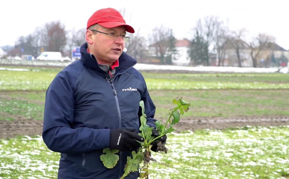 Marcin Kanownik, Menedżer ds. upraw rolniczych, Innvigo