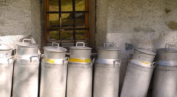 KE: Notowania na unijnym rynku mleka idą w górę