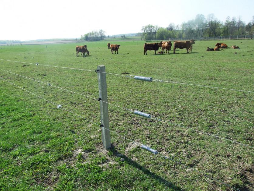 Myśląc oprzyszłym ogrodzeniu pastwiska, nie można zapomnieć obramie, przez którą będą przechodzić zwierzęta. Wprzypadku ogrodzenia elektrycznego trzeba dokupić zestaw bramowy składający się zsprężyn, izolatorów oraz uchwytu kołnierzowego. Foto. Pomelac