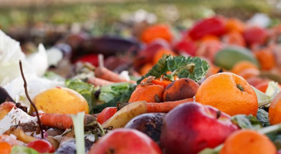 Brak zrozumienia dat ważności to jedna z przyczyn marnowania jedzenia