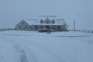 Śnieg w Teksasie to rzadkość, a temperatury poniżej -15 st. C to już całkowity ewenement fot. dr Jim Mazurkiewicz