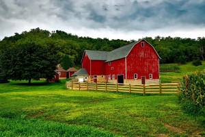 USA: Ministerstwo rolnictwa chce rozszerzyć program CRP