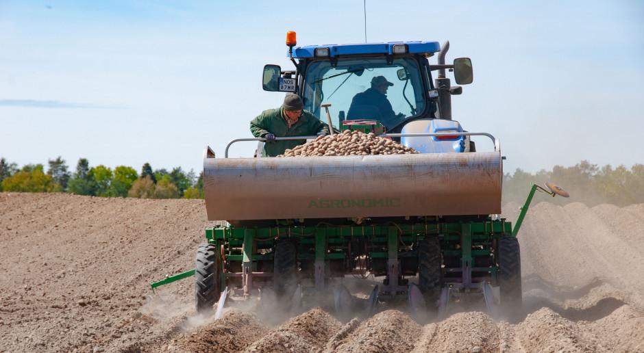 Przedwschodowa walka zchwastami wuprawie ziemniaka