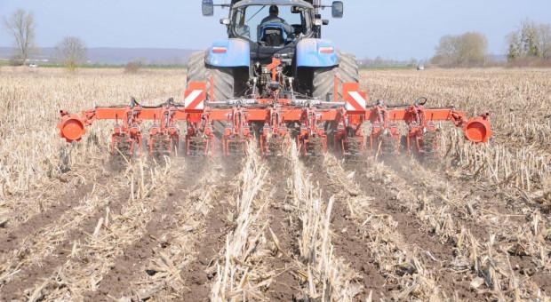 Szymczak na PIdS: Rolnik powinien spojrzeć na swoją produkcję jak krytyk