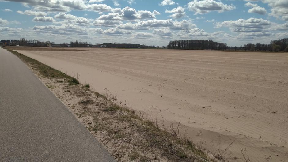 Wokolicy, wktórej znajduje się gospodarstwo, problemem jest erozja wodna - zdjęcie pola sąsiadującego z polem rolnika