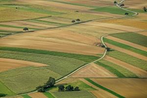 Większość Ukraińców nie chce sprzedawać swojej ziemi