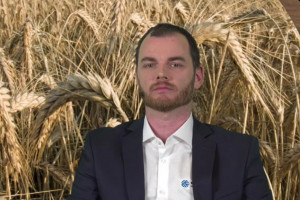 PIdS Online: Ochrona zbóż a wiosenne spadki temperatur