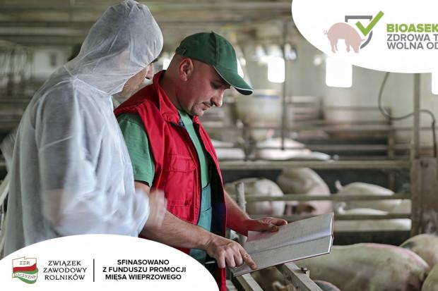 Bioasekuracja - codzienność hodowców świń