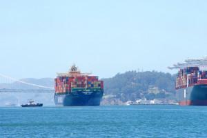 Statki z hiszpańskimi bydłem od 2 miesięcy tułają się po morzu