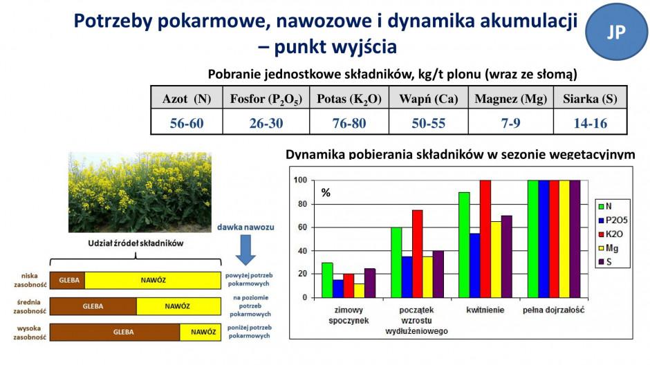 Slajd z prezentacji, PIdS, prof. Potarzycki