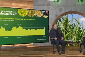 Co się dzieje na rynku kukurydzy?