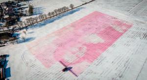 Mona Lisa w wykonaniu Agrifaca powstała na zaśnieżonym polu o powierzchni ponad 3 ha fot. mat. prasowe